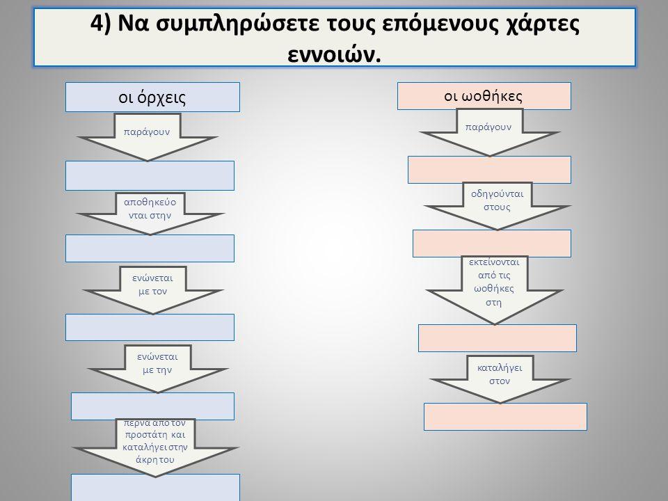 4) Να συμπληρώσετε τους επόμενους χάρτες εννοιών. οι όρχεις οι ωοθήκες παράγουν αποθηκεύο νται στην ενώνεται με τον περνά από τον προστάτη και καταλήγ