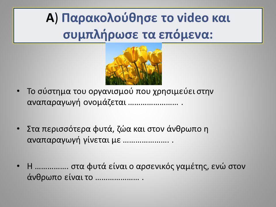 Α) Παρακολούθησε το video και συμπλήρωσε τα επόμενα: Το σύστημα του οργανισμού που χρησιμεύει στην αναπαραγωγή ονομάζεται ……………………. Στα περισσότερα φυ