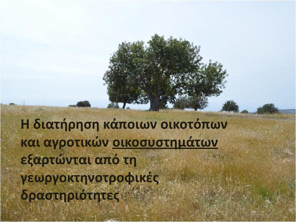 Η διατήρηση κάποιων οικοτόπων και αγροτικών οικοσυστημάτων εξαρτώνται από τη γεωργοκτηνοτροφικές δραστηριότητες