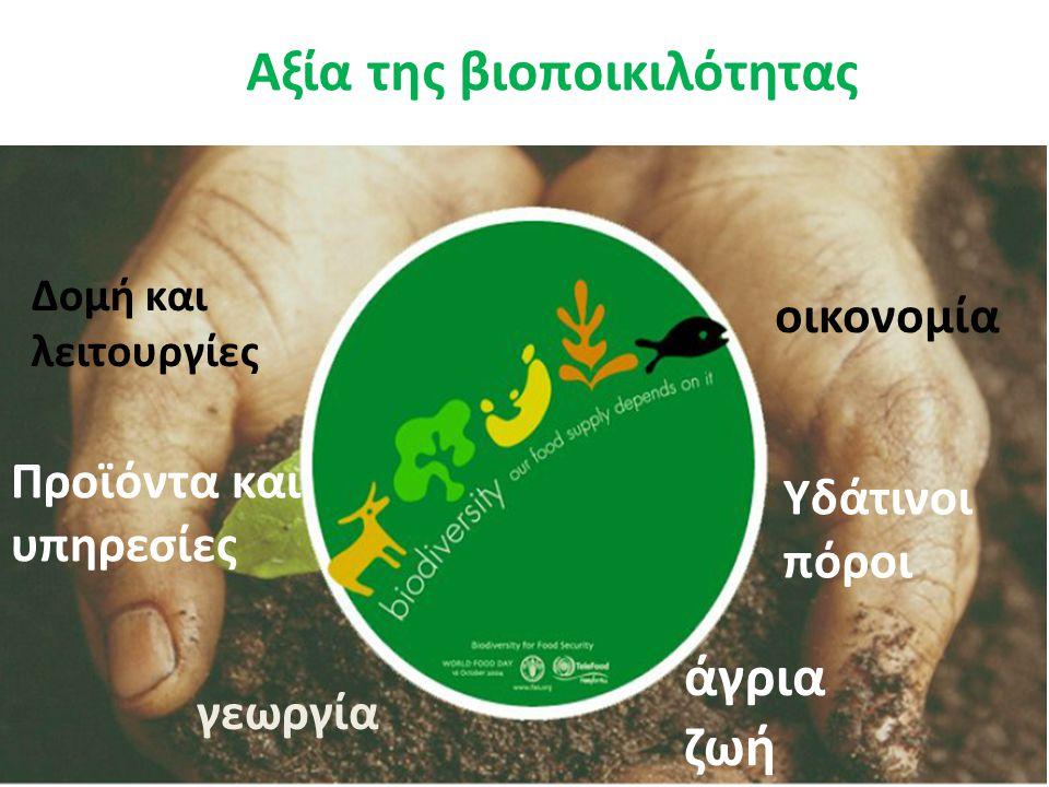 γεωργία άγρια ζωή οικονομία Προϊόντα και υπηρεσίες Υδάτινοι πόροι Δομή και λειτουργίες Αξία της βιοποικιλότητας