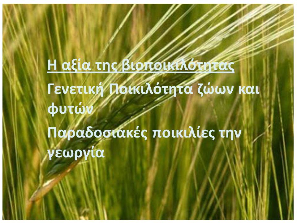 Η αξία της βιοποικιλότητας Γενετική Ποικιλότητα ζώων και φυτών Παραδοσιακές ποικιλίες την γεωργία