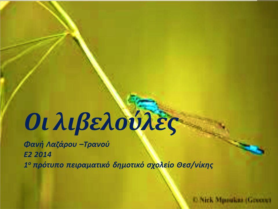 Οι λιβελούλες Φανή Λαζάρου –Τρανού Ε2 2014 1 ο πρότυπο πειραματικό δημοτικό σχολείο Θεσ/νίκης