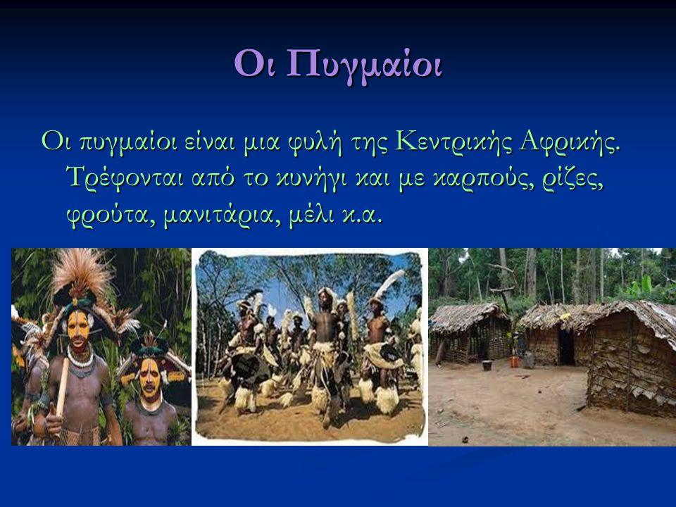 Οι Πυγμαίοι Οι πυγμαίοι είναι μια φυλή της Κεντρικής Αφρικής. Τρέφονται από το κυνήγι και με καρπούς, ρίζες, φρούτα, μανιτάρια, μέλι κ.α.