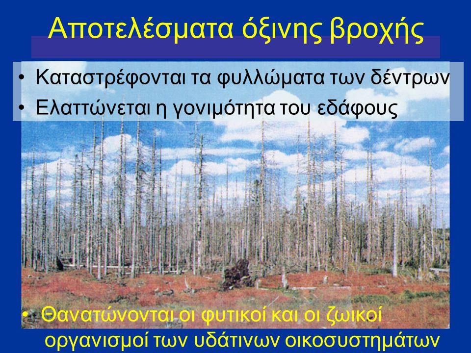Καταστρέφονται τα φυλλώματα των δέντρων Ελαττώνεται η γονιμότητα του εδάφους Αποτελέσματα όξινης βροχής Θανατώνονται οι φυτικοί και οι ζωικοί οργανισμ