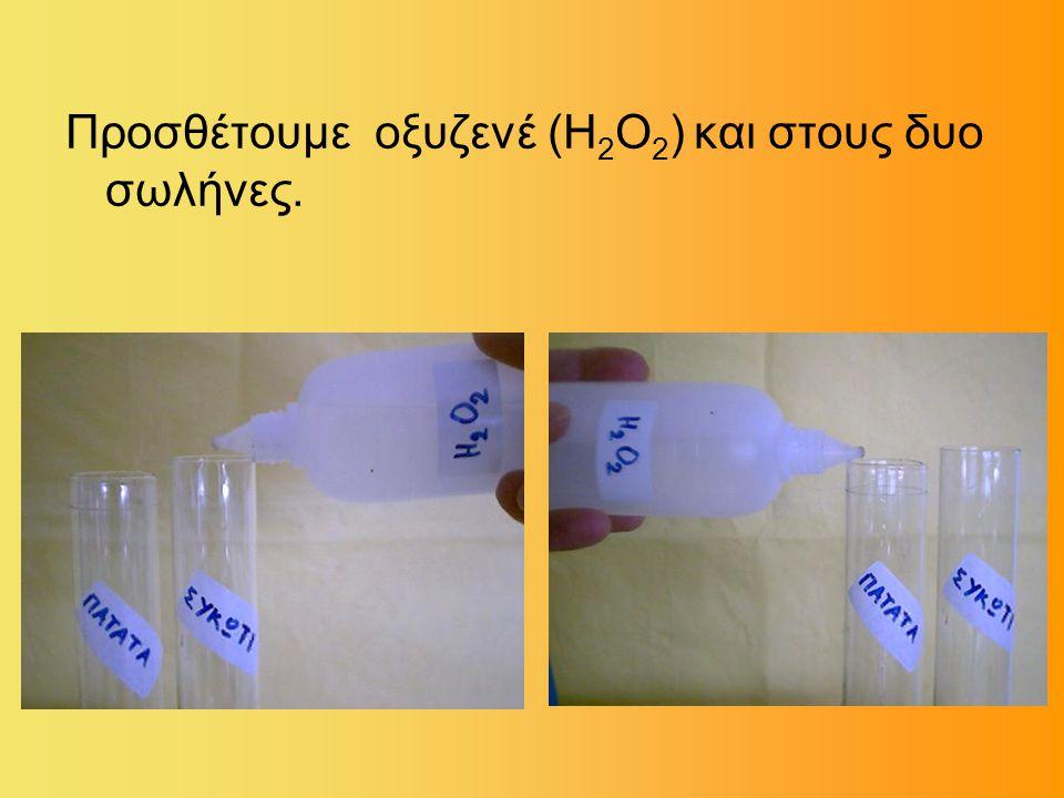 Προσθέτουμε οξυζενέ (Η 2 Ο 2 ) και στους δυο σωλήνες.