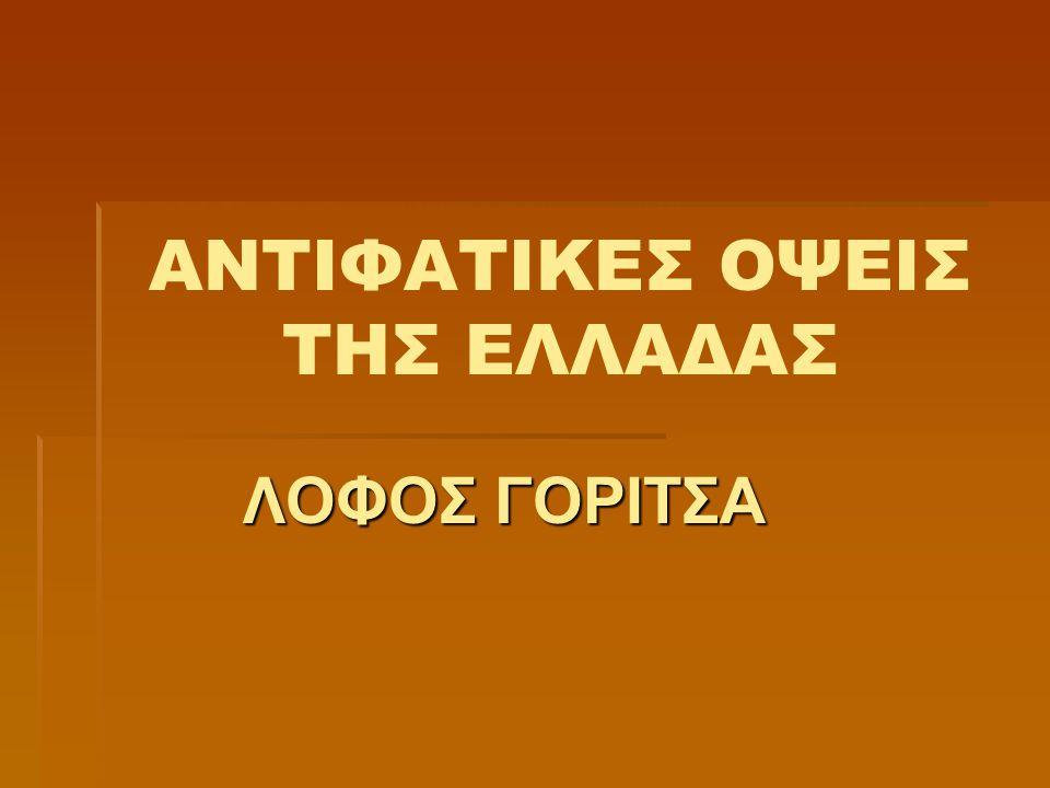 ΑΦΟΡΜΗΣΗ  Στην 1 η ενότητα της Νεοελληνικής Γλώσσας της Γ΄ Γυμνασίου μελετήσαμε αντιφατικές όψεις της Ελλάδας μέσα από ποικίλα κείμενα.
