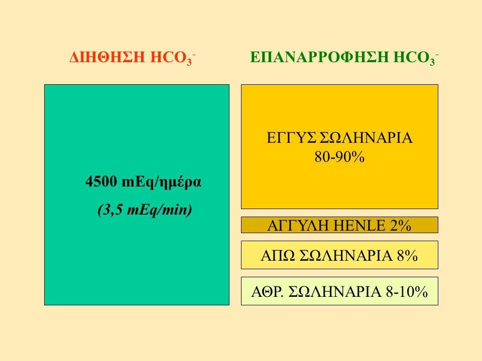 ΕΓΓΥΣ ΣΩΛΗΝΑΡΙΑ 80-90% ΑΓΓΥΛΗ HENLE 2% ΑΠΩ ΣΩΛΗΝΑΡΙΑ 8% ΔΙΗΘΗΣΗ HCO 3 - ΕΠΑΝΑΡΡΟΦΗΣΗ HCO 3 - 4500 mEq/ημέρα (3,5 mEq/min) ΑΘΡ. ΣΩΛΗΝΑΡΙΑ 8-10%