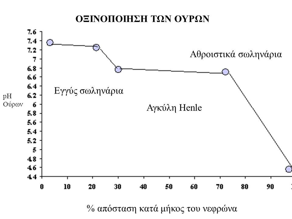ΟΞΙΝΟΠΟΙΗΣΗ ΤΩΝ ΟΥΡΩΝ % απόσταση κατά μήκος του νεφρώνα pH Ούρων Εγγύς σωληνάρια Αγκύλη Henle Αθροιστικά σωληνάρια