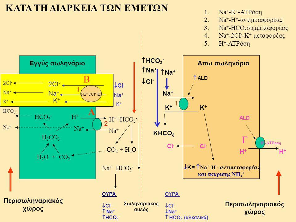 Κ+Κ+ Σωληναριακός αυλός Άπω σωληνάριο Περισωληναριακός χώρος Περισωληναριακός χώρος Κ+Κ+ Na + 1.Na + -K + -ATPάση 2.Na + -H + -αντιμεταφορέας 3.Na + -