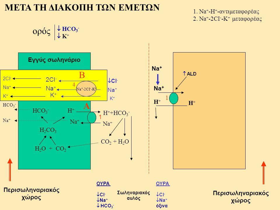 Σωληναριακός αυλός Περισωληναριακός χώρος 1. Na + -H + -αντιμεταφορέας 2. Na + -2CI - -K + μεταφορέας ΜΕΤΑ ΤΗ ΔΙΑΚΟΠΗ ΤΩΝ ΕΜΕΤΩΝ Εγγύς σωληνάριο ΟΥΡΑ