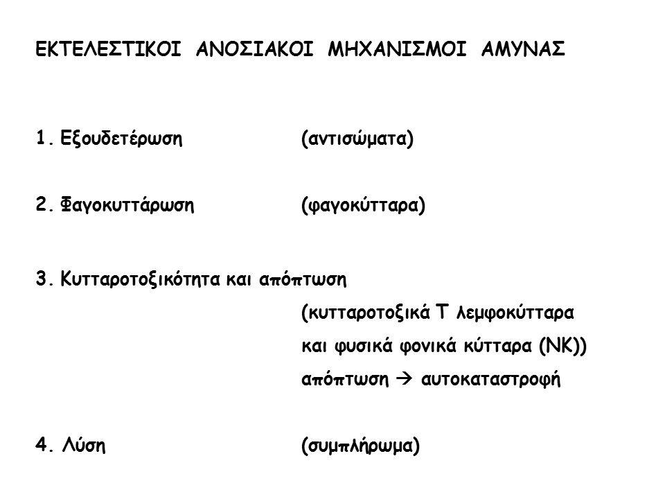 ΕΚΤΕΛΕΣΤΙΚΟΙ ΑΝΟΣΙΑΚΟΙ ΜΗΧΑΝΙΣΜΟΙ ΑΜΥΝΑΣ 1.Εξουδετέρωση(αντισώματα) 2.Φαγοκυττάρωση(φαγοκύτταρα) 3.Κυτταροτοξικότητα και απόπτωση (κυτταροτοξικά Τ λεμ