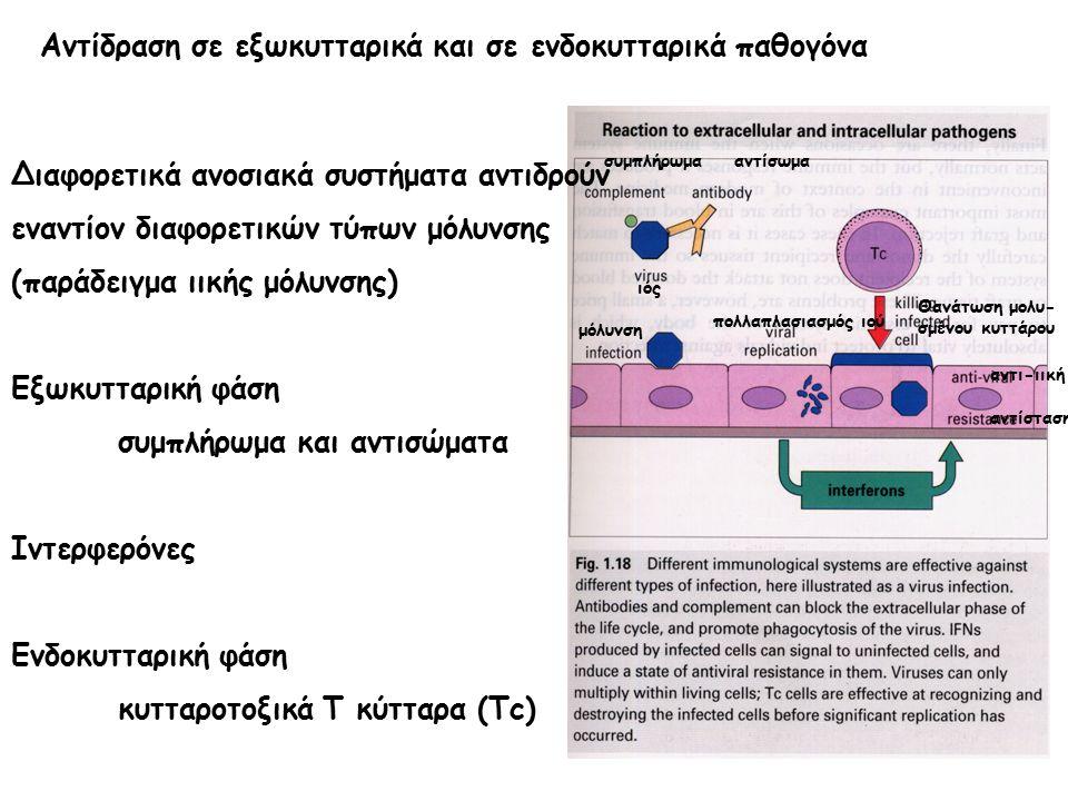 Αντίδραση σε εξωκυτταρικά και σε ενδοκυτταρικά παθογόνα συμπλήρωμα αντίσωμα ιός μόλυνση πολλαπλασιασμός ιού αντι-ιική αντίσταση Θανάτωση μολυ- σμένου