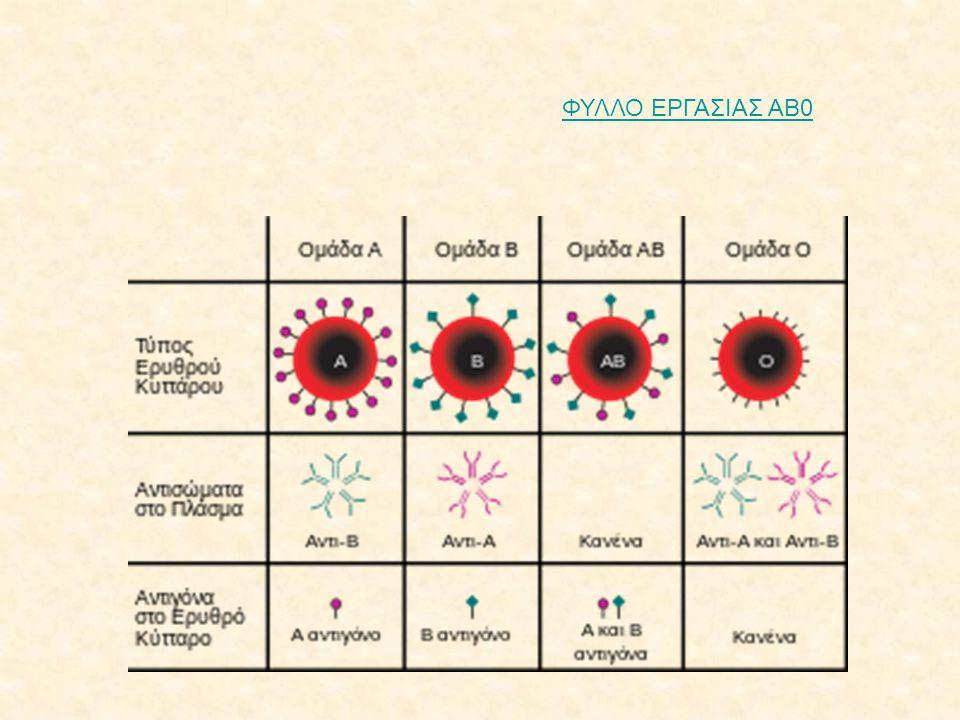 Το γονίδιο Ι που καθορίζει τις ομάδες αίματος έχει 3 αλληλόμορφα (Ι Α Ι Β και ι).