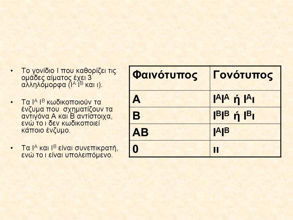 Το γονίδιο Ι που καθορίζει τις ομάδες αίματος έχει 3 αλληλόμορφα (Ι Α Ι Β και ι). Τα Ι Α Ι Β κωδικοποιούν τα ένζυμα που σχηματίζουν τα αντιγόνα Α και