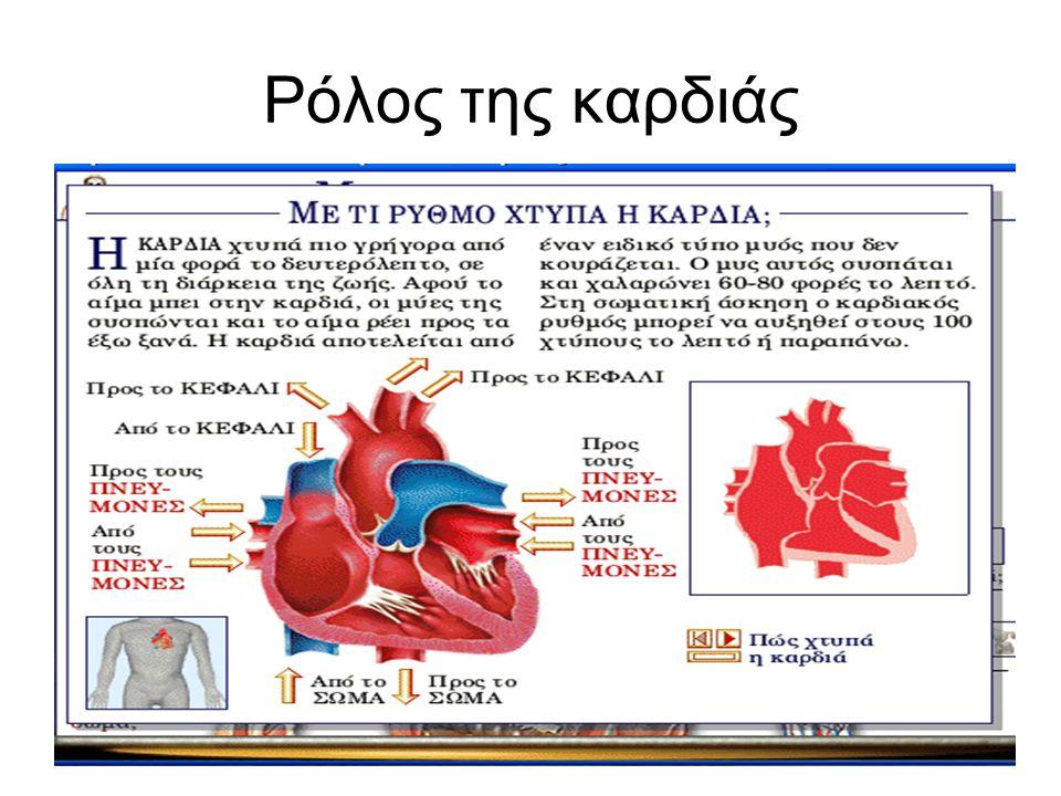 Ρόλος της καρδιάς