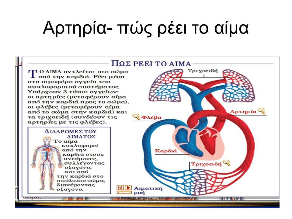 Αρτηρία- πώς ρέει το αίμα