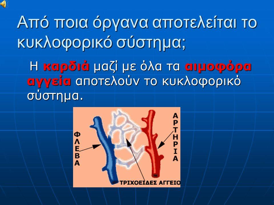 Από ποια όργανα αποτελείται το κυκλοφορικό σύστημα; Η καρδιά μαζί με όλα τα αιμοφόρα αγγεία αποτελούν το κυκλοφορικό σύστημα.