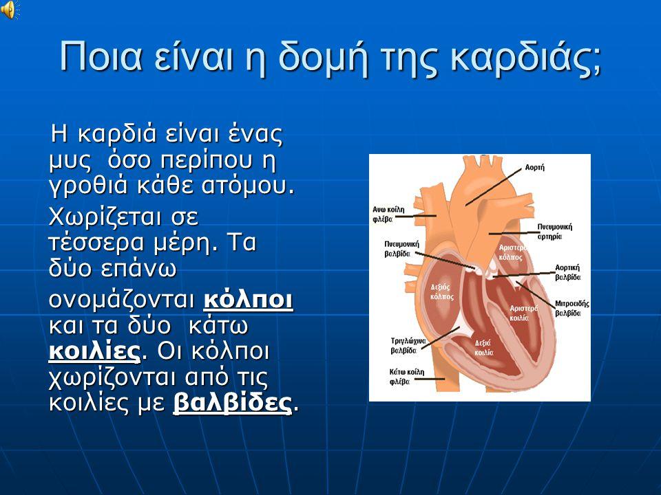 Ποια είναι η δομή της καρδιάς; Η καρδιά είναι ένας μυς όσο περίπου η γροθιά κάθε ατόμου. Η καρδιά είναι ένας μυς όσο περίπου η γροθιά κάθε ατόμου. Χωρ