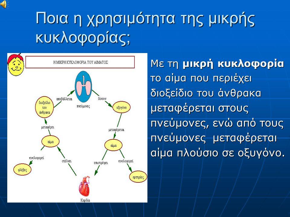 Ποια είναι η χρησιμότητα της μεγάλης κυκλοφορίας; Με τη μεγάλη κυκλοφορία το αίμα που είναι πλούσιο σε οξυγόνο μεταφέρεται σε όλα τα όργανα του σώματος, ενώ από τα όργανα του σώματος μεταφέρεται αίμα που περιέχει διοξείδιο του άνθρακα.