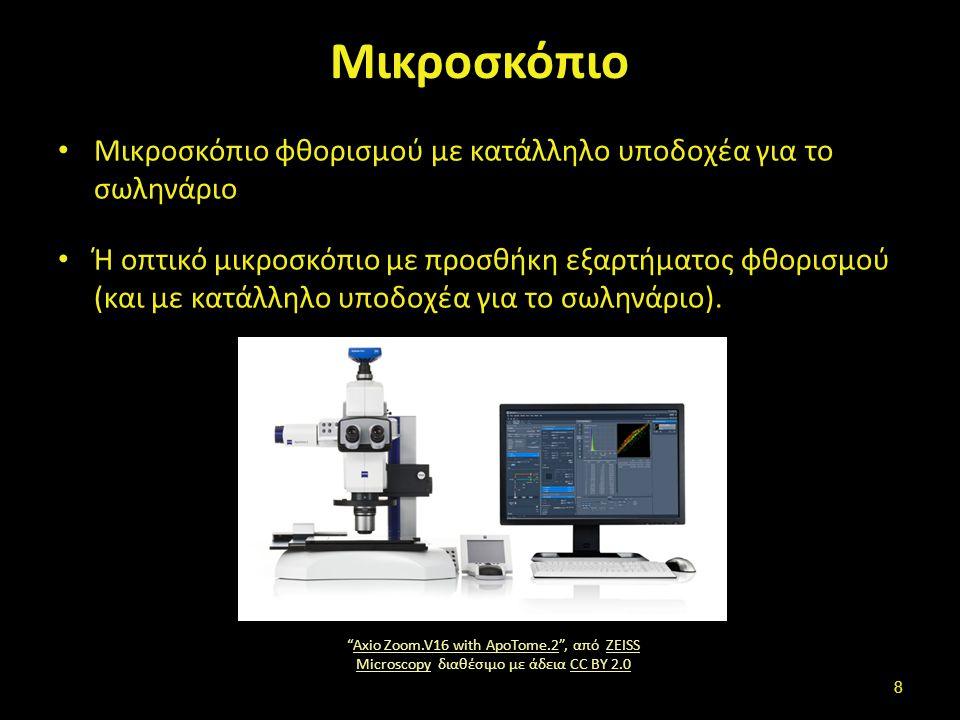 Μικροσκόπιο Μικροσκόπιο φθορισμού με κατάλληλο υποδοχέα για το σωληνάριο Ή οπτικό μικροσκόπιο με προσθήκη εξαρτήματος φθορισμού (και με κατάλληλο υποδ