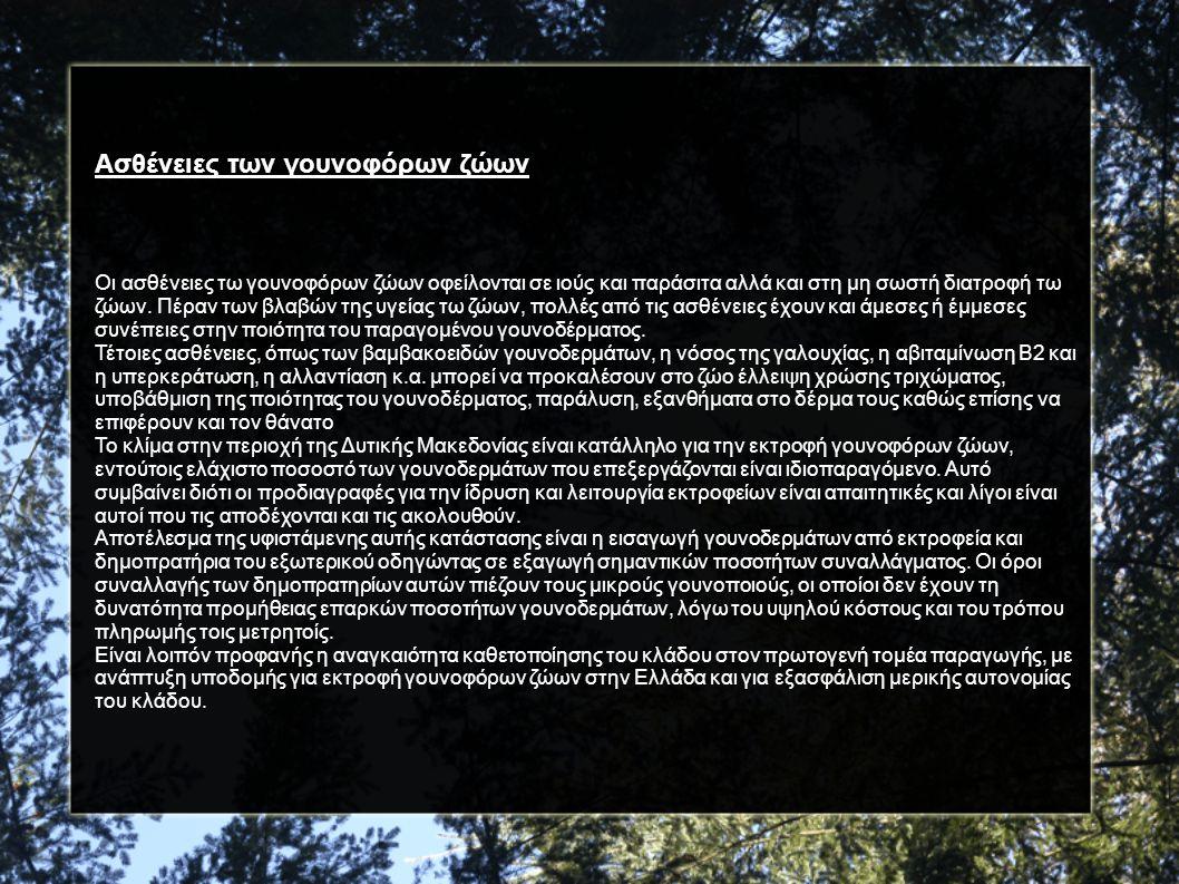 Fur in Siatista: Μοναδική επίδειξη γούνας (βίντεο) http://www.youtube.com/watch?v=boIyVRyw-v0