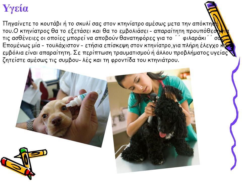 Υγεία Πηγαίνετε το κουτάβι ή το σκυλί σας στον κτηνίατρο αμέσως μετα την απόκτησή του.Ο κτηνίατρος θα το εξετάσει και θα το εμβολιάσει - απαραίτητη προυπόθεση για τις ασθένειες οι οποίες μπορεί να αποβούν θανατηφόρες για το ΄΄ φιλαράκι΄΄ σας.