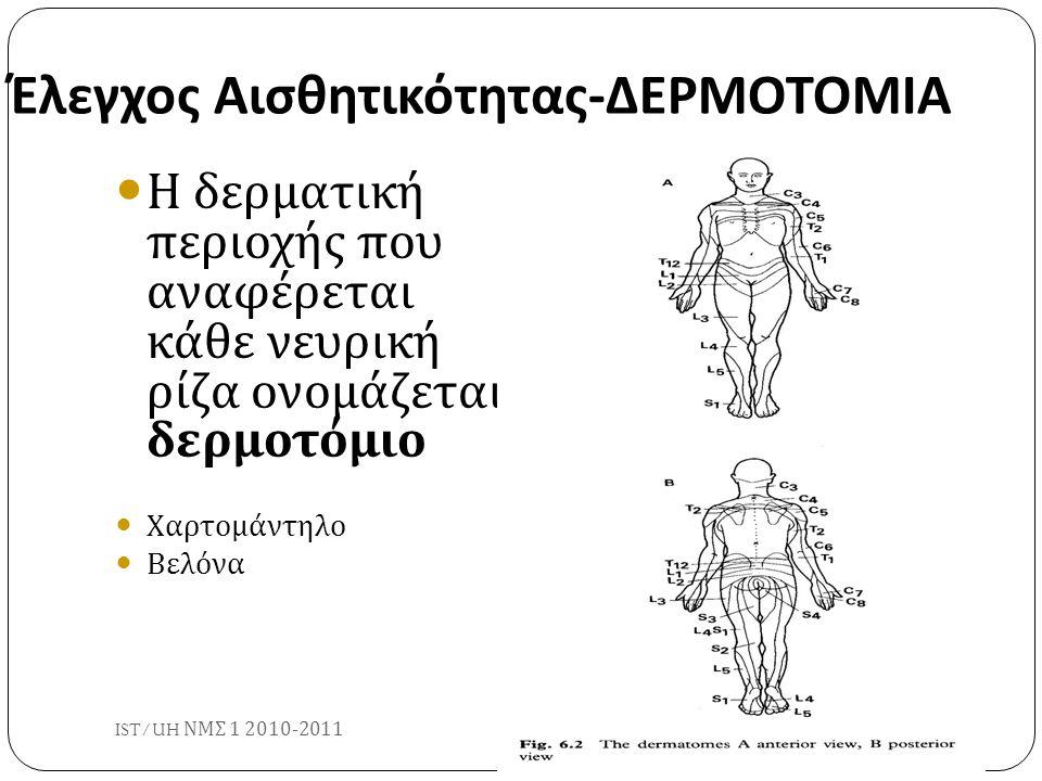 Έλεγχος Αισθητικότητας - ΔΕΡΜΟΤΟΜΙΑ IST/UH ΝΜΣ 1 2010-2011 Η δερματική περιοχής που αναφέρεται κάθε νευρική ρίζα ονομάζεται δερμοτόμιο Χαρτομάντηλο Βε