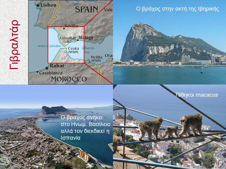 Γιβραλτάρ Ο βράχος στην ακτή της Ιβηρικής Πίθηκοι macacus Ο βράχος ανήκει στο Ηνωμ. Βασίλειο αλλά τον διεκδικεί η Ισπανία