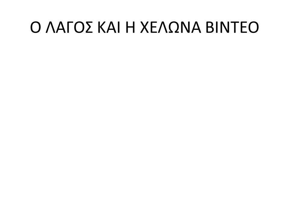 Ο ΛΑΓΟΣ ΚΑΙ Η ΧΕΛΩΝΑ ΒΙΝΤΕΟ