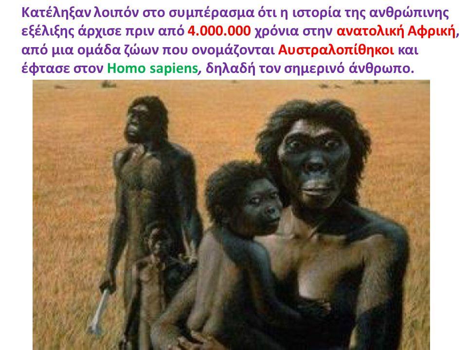 Κατέληξαν λοιπόν στο συμπέρασμα ότι η ιστορία της ανθρώπινης εξέλιξης άρχισε πριν από 4.000.000 χρόνια στην ανατολική Αφρική, από μια ομάδα ζώων που ο
