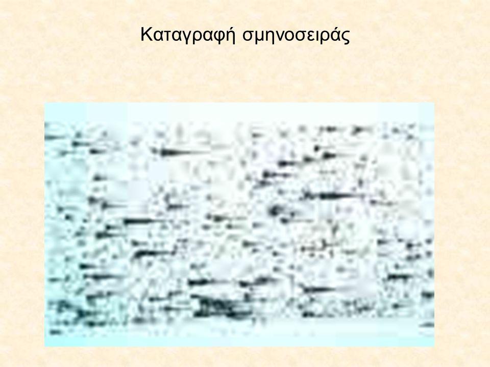 Καταγραφή σμηνοσειράς