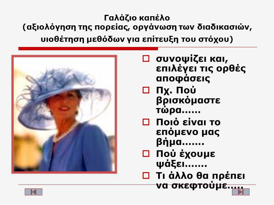 Γαλάζιο καπέλο (αξιολόγηση της πορείας, οργάνωση των διαδικασιών, υιοθέτηση μεθόδων για επίτευξη του στόχου)  συνοψίζει και, επιλέγει τις ορθές αποφάσεις  Πχ.