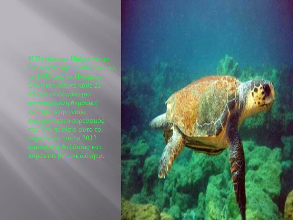 Η Παγκόσμια Ημέρα για τη Βιοποικιλότητα καθιερώθηκε το 1993 από τα Ηνωμένα Έθνη και έκτοτε κάθε 22 Μαΐου επιλέγεται μια συγκεκριμένη θεματική ενότητα στην οποία αφιερώνεται ο εορτασμός της.