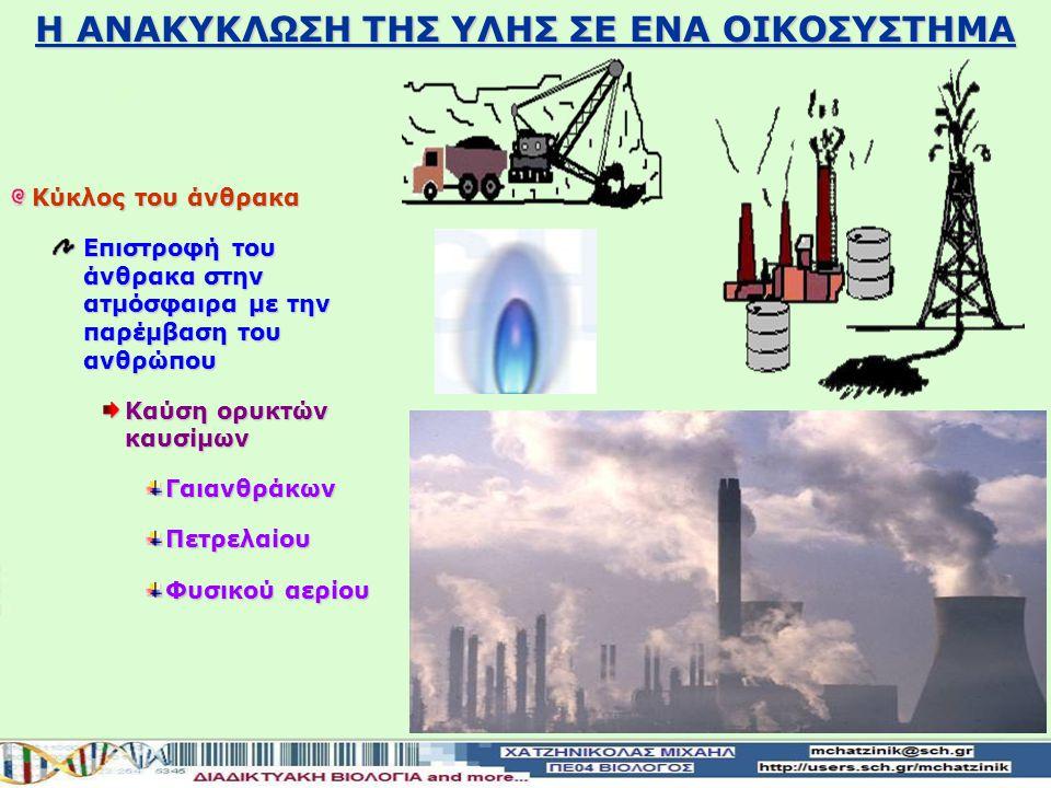 Διοξείδιο του άνθρακα+ Νερό+ Οξυγόνο +Νερό ΓΛΥΚΟΖΗ ΕΝΕΡΓΕΙΑ Η ΑΝΑΚΥΚΛΩΣΗ ΤΗΣ ΥΛΗΣ ΣΕ ΕΝΑ ΟΙΚΟΣΥΣΤΗΜΑ Κύκλος του άνθρακα Επιστροφή του άνθρακα στην ατμόσφαιρα διοξειδίου του άνθρακα Με τη μορφή διοξειδίου του άνθρακα αυτότροφοι και οι ετερότροφοι διασπούν οργανικές ενώσεις με τη διαδικασία της κυτταρικής αναπνοής Οι αυτότροφοι και οι ετερότροφοι διασπούν οργανικές ενώσεις της τροφής με τη διαδικασία της κυτταρικής αναπνοής Κατά τη διάσπαση ελευθερώνεται ενέργεια διοξείδιο του άνθρακα επιστρέφει στην ατμόσφαιρα Και διοξείδιο του άνθρακα που επιστρέφει στην ατμόσφαιρα