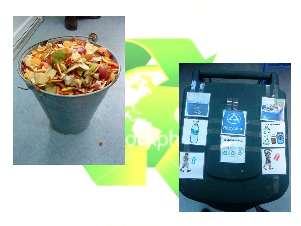 Σπορεία και μεταφύτευση λουλουδιών με οργανικό λίπασμα
