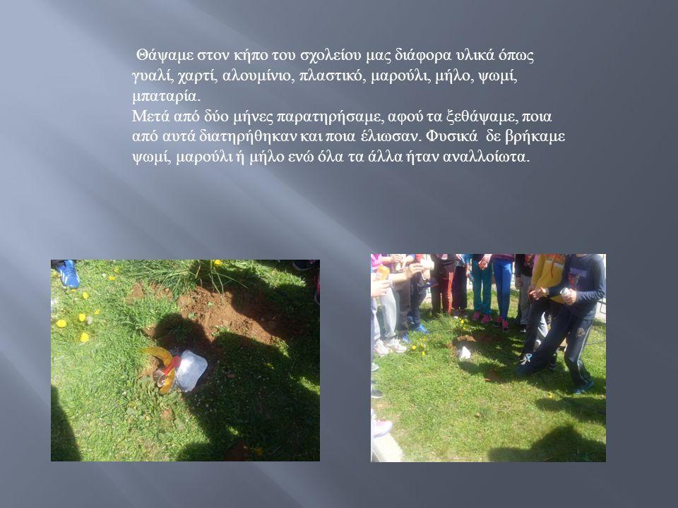Θάψαμε στον κήπο του σχολείου μας διάφορα υλικά όπως γυαλί, χαρτί, αλουμίνιο, πλαστικό, μαρούλι, μήλο, ψωμί, μπαταρία.