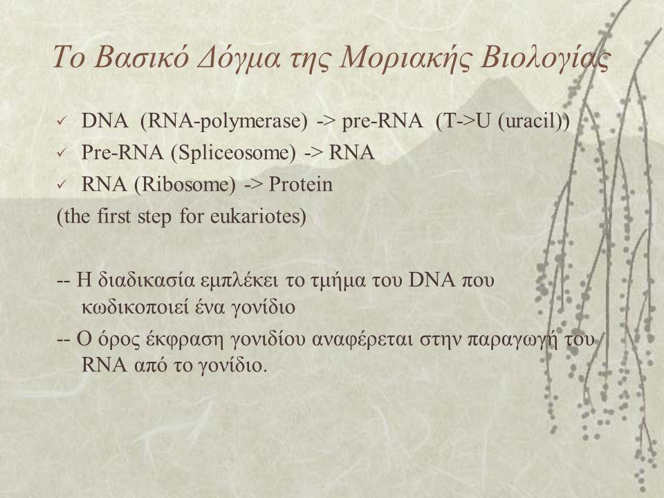 Το Βασικό Δόγμα της Μοριακής Βιολογίας DNA (RNA-polymerase) -> pre-RNA (Τ->U (uracil)) Pre-RNA (Spliceosome) -> RNA RNA (Ribosome) -> Protein (the first step for eukariotes) -- Η διαδικασία εμπλέκει το τμήμα του DNA που κωδικοποιεί ένα γονίδιο -- Ο όρος έκφραση γονιδίου αναφέρεται στην παραγωγή του RNA από το γονίδιο.