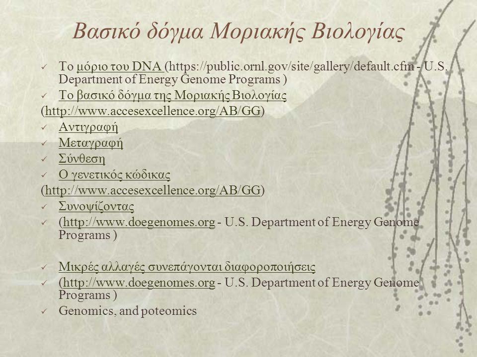 Βασικό δόγμα Μοριακής Βιολογίας Το μόριο του DNA (https://public.ornl.gov/site/gallery/default.cfm - U.S. Department of Energy Genome Programs )μόριο