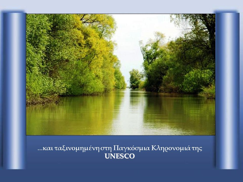 Δέλτα του Δούναβη-Ρουμανία Το Δέλτα του Δούναβη-Ρουμανία, μια περιβαλλοντικά προστατευόμενη περιοχή…
