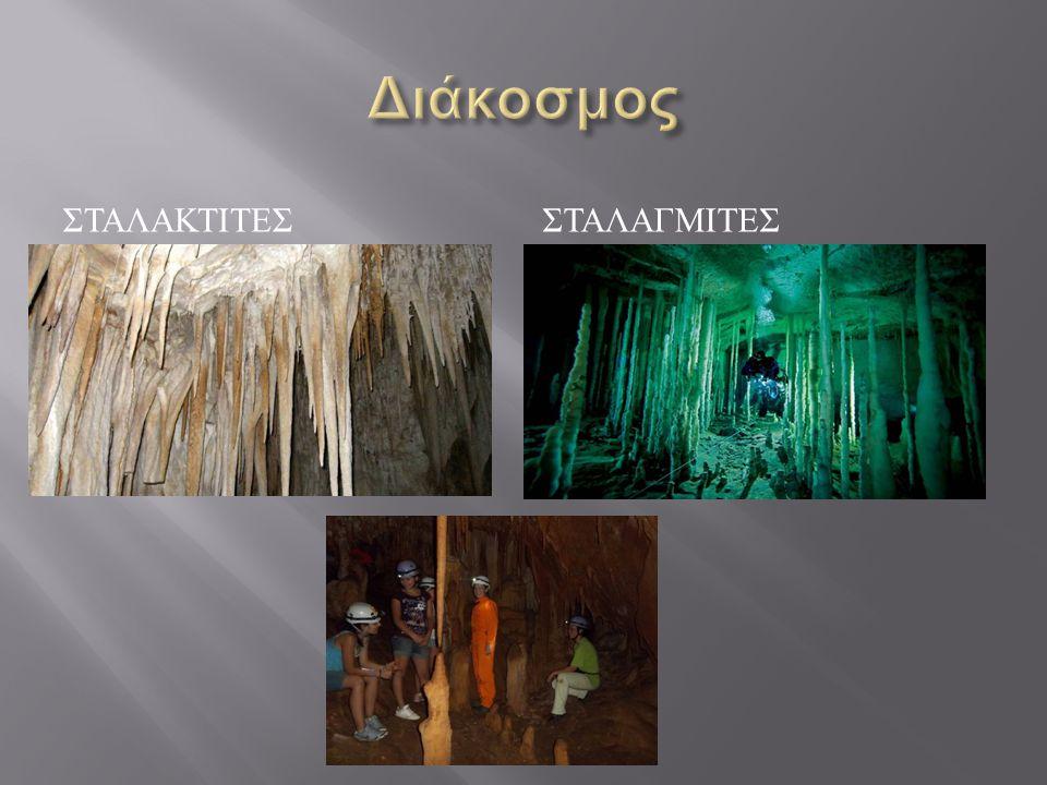  Κάθε σπήλαιο δημιουργεί το δικό του μικροκλίμα ανάλογα με την υγρασία, το γεωγραφικό του πλάτος και τη θερμοκρασία του εξωτερικού περιβάλλοντος.