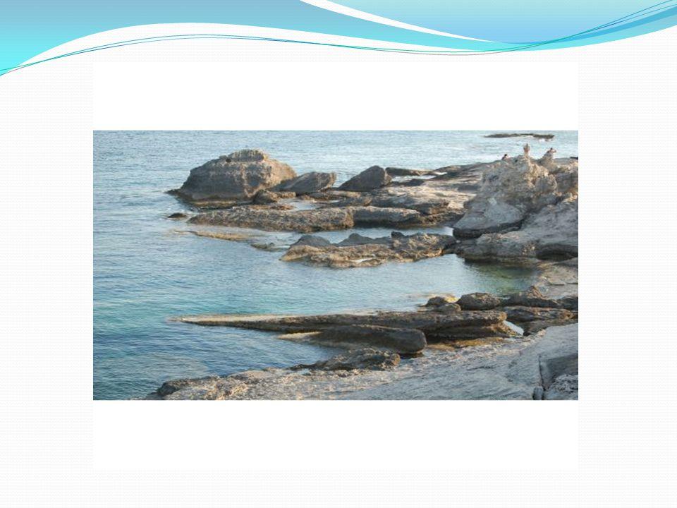 Παραλία Φαληράκι Η αμμουδερή παραλία Φαληράκι είναι μια πολύ μεγάλη παραλία (5 χμ.) στην Ανατολική Ακτή του νησιού της Ρόδου και βρίσκεται 12 περίπου χιλιόμετρα Νότια από την πρωτεύουσα.
