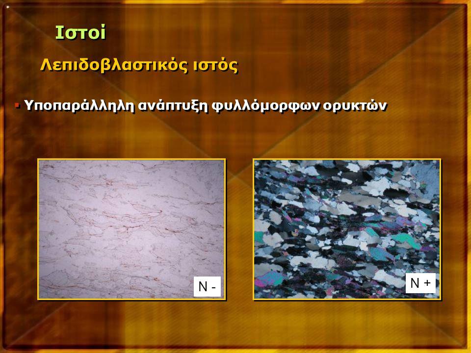 Λεπιδοβλαστικός ιστός  Υποπαράλληλη ανάπτυξη φυλλόμορφων ορυκτών Ν - Ν + Ιστοί
