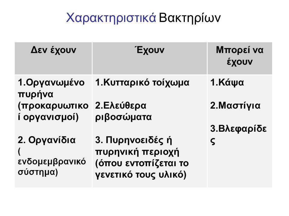 Χαρακτηριστικά Βακτηρίων Δεν έχουνΈχουνΜπορεί να έχουν 1.Οργανωμένο πυρήνα (προκαρυωτικο ί οργανισμοί) 2.