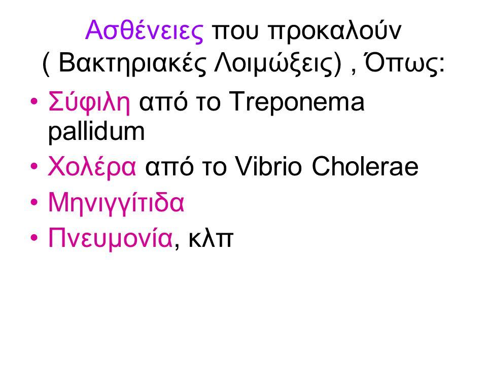Ασθένειες που προκαλούν ( Βακτηριακές Λοιμώξεις), Όπως: Σύφιλη από το Treponema pallidum Χολέρα από το Vibrio Cholerae Μηνιγγίτιδα Πνευμονία, κλπ