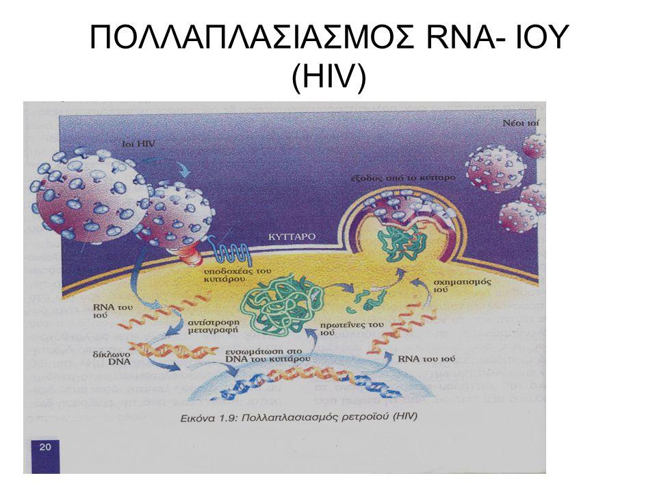 ΠΟΛΛΑΠΛΑΣΙΑΣΜΟΣ RNA- ΙΟΥ (HIV)