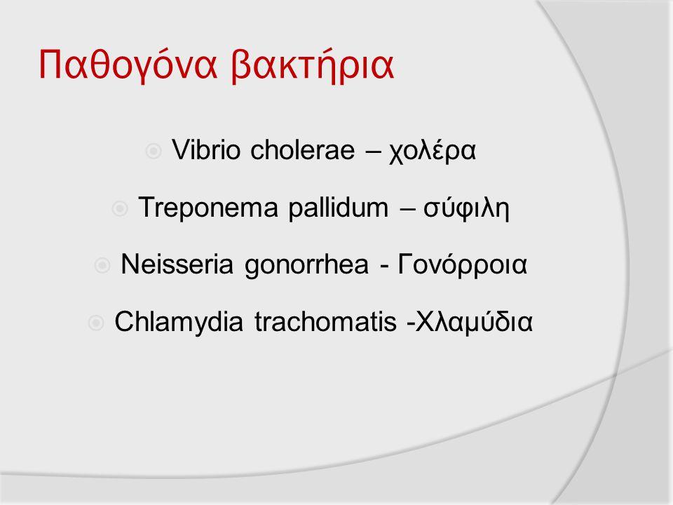 Παθογόνα βακτήρια  Vibrio cholerae – χολέρα  Treponema pallidum – σύφιλη  Neisseria gonorrhea - Γονόρροια  Chlamydia trachomatis -Χλαμύδια