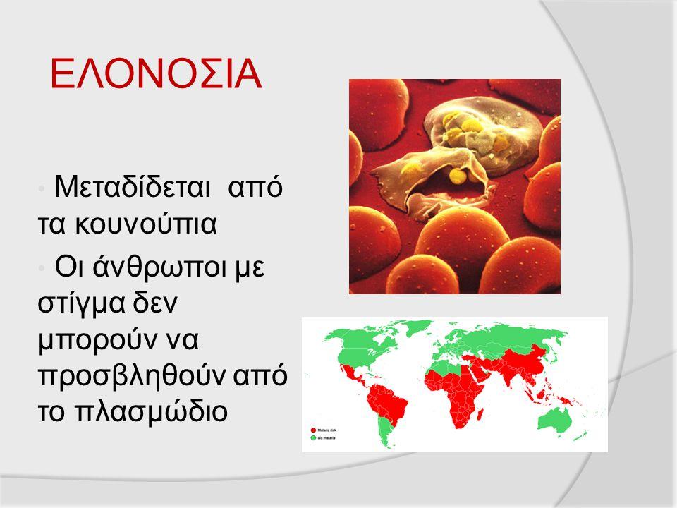 ΕΛΟΝΟΣΙΑ Μεταδίδεται από τα κουνούπια Οι άνθρωποι με στίγμα δεν μπορούν να προσβληθούν από το πλασμώδιο