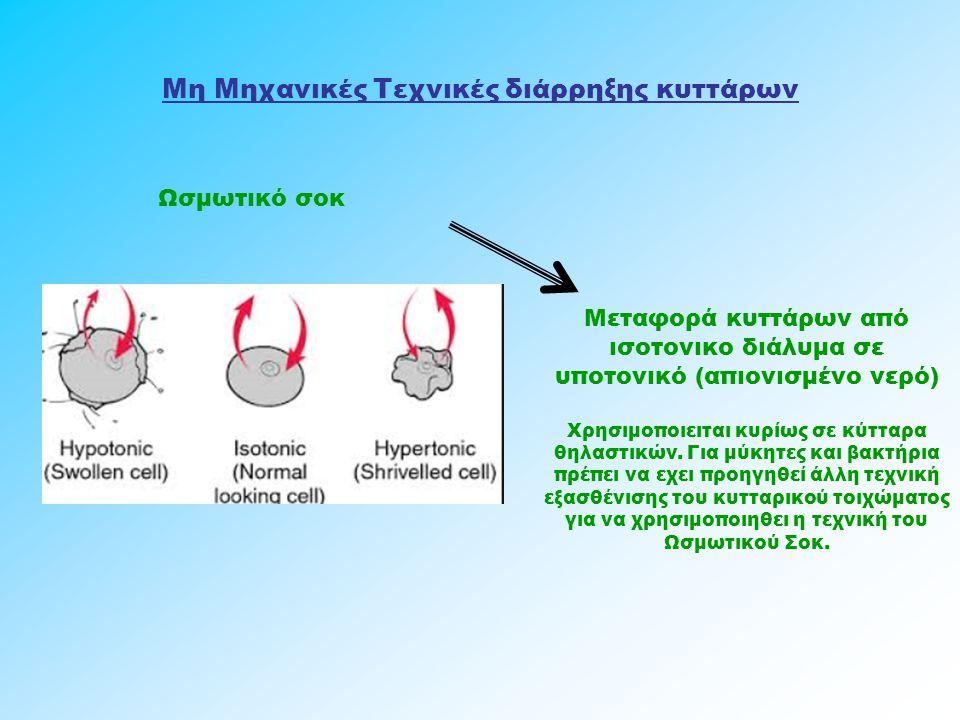 Μη Μηχανικές Τεχνικές διάρρηξης κυττάρων Ωσμωτικό σοκ Μεταφορά κυττάρων από ισοτονικο διάλυμα σε υποτονικό (απιονισμένο νερό) Χρησιμοποιειται κυρίως σ