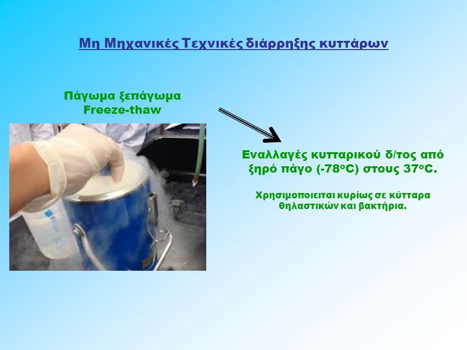 Μη Μηχανικές Τεχνικές διάρρηξης κυττάρων Πάγωμα ξεπάγωμα Freeze-thaw Εναλλαγές κυτταρικού δ/τος από ξηρό πάγο (-78 ο C) στους 37 ο C. Χρησιμοποιειται