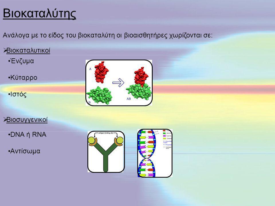DNA ή RNA Αντίσωμα  Βιοσυγγενικοί Ένζυμα Κύταρρο Ιστός  Βιοκαταλυτικοί Ανάλογα με το είδος του βιοκαταλύτη οι βιοαισθητήρες χωρίζονται σε: Βιοκαταλύ